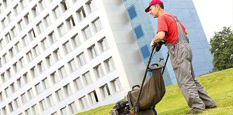 Disinfestazione e pulizie condominiali