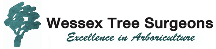 Wessex Tree Surgeons logo