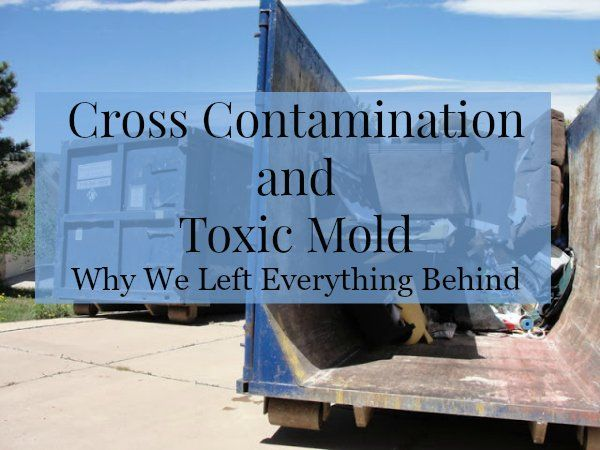 Truth About Mold - Cross Contamination