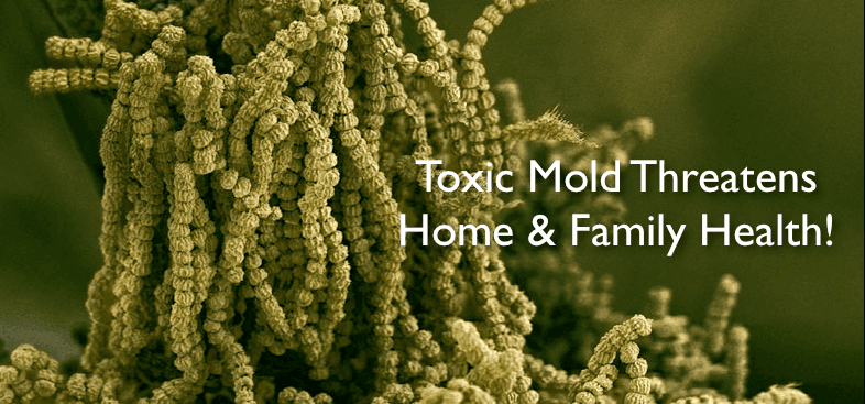 Truth About Mold - Health Effects