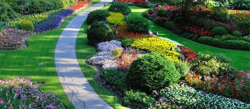 Beautiful landscape design with flowers and path in Katy, TX