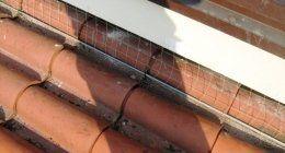 Installazione rete per piccioni su un tetto
