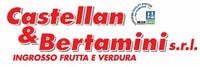 CASTELLAN & BERTAMINI-LOGO
