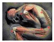 disegno di corpo con cerchi che indicano articolazioni