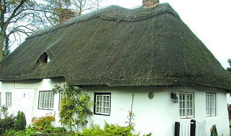already thatched house