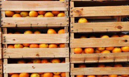 Casse di legno con delle arance