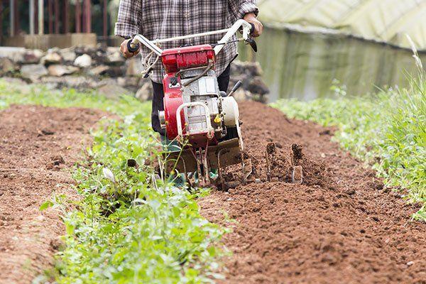 un uomo spinge una motozappa su un campo