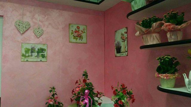 scaffali con piante su parete rosa