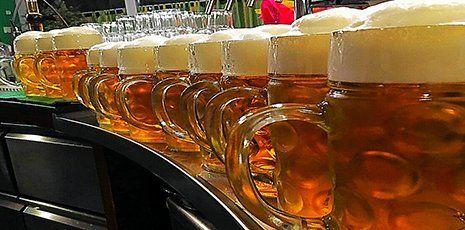 Fila di boccali colmi di birra schiumante
