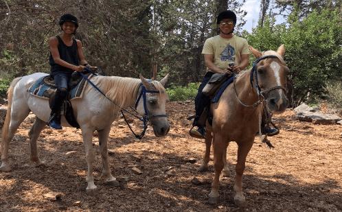 חוגי רכיבה על סוסים