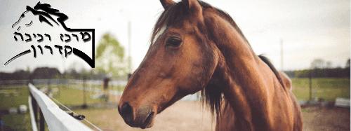 לימודי רכיבה על סוסים - מושב קדרון ליד גדרה