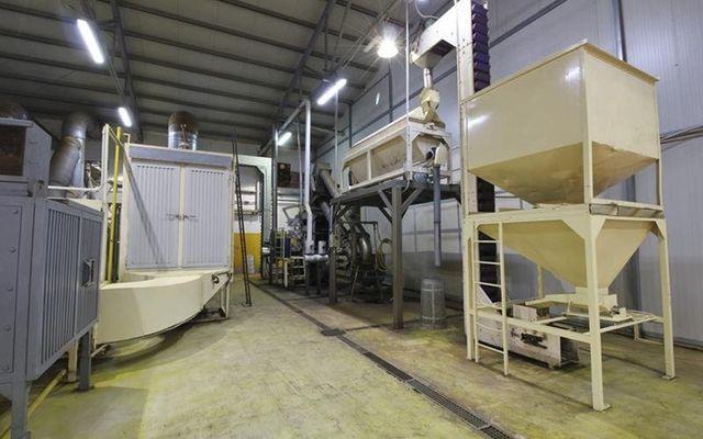 Produktion sizilianischer Mandeln