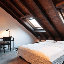 Rooflight and bed in loft