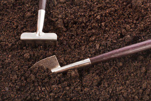soil digging