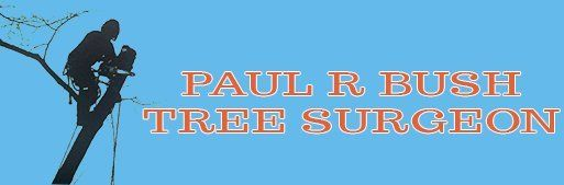 PAUL R BUSH TREE SURGEON logo
