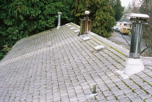 Miller Yard Maintenance Free Soil Analysis Vancouver Wa