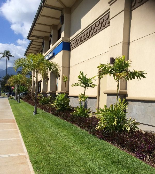 The result of landscape maintenance services in Maui, HI