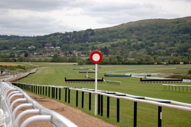 A racecourse