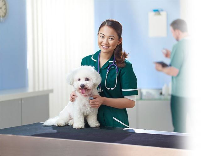 Nurse with fluffy white dog