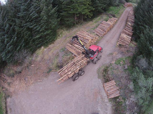log supply