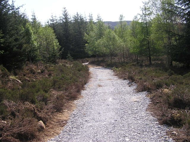 path construction