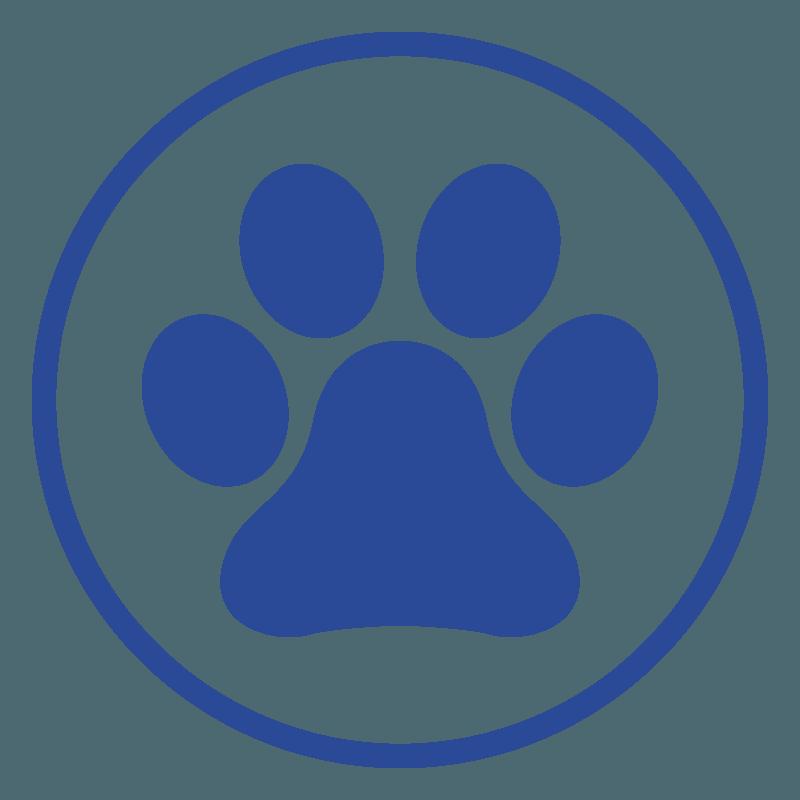 Piccoli mammiferi