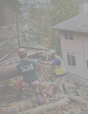 Emerald Coast Tree Service - Debris Removal Pensacola FL
