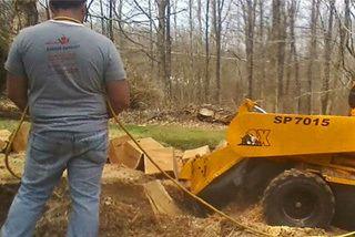 stump removal Lockport, NY