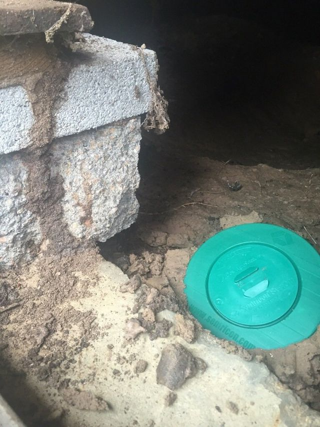 Pest Control Service For Bryan College Station Normangee