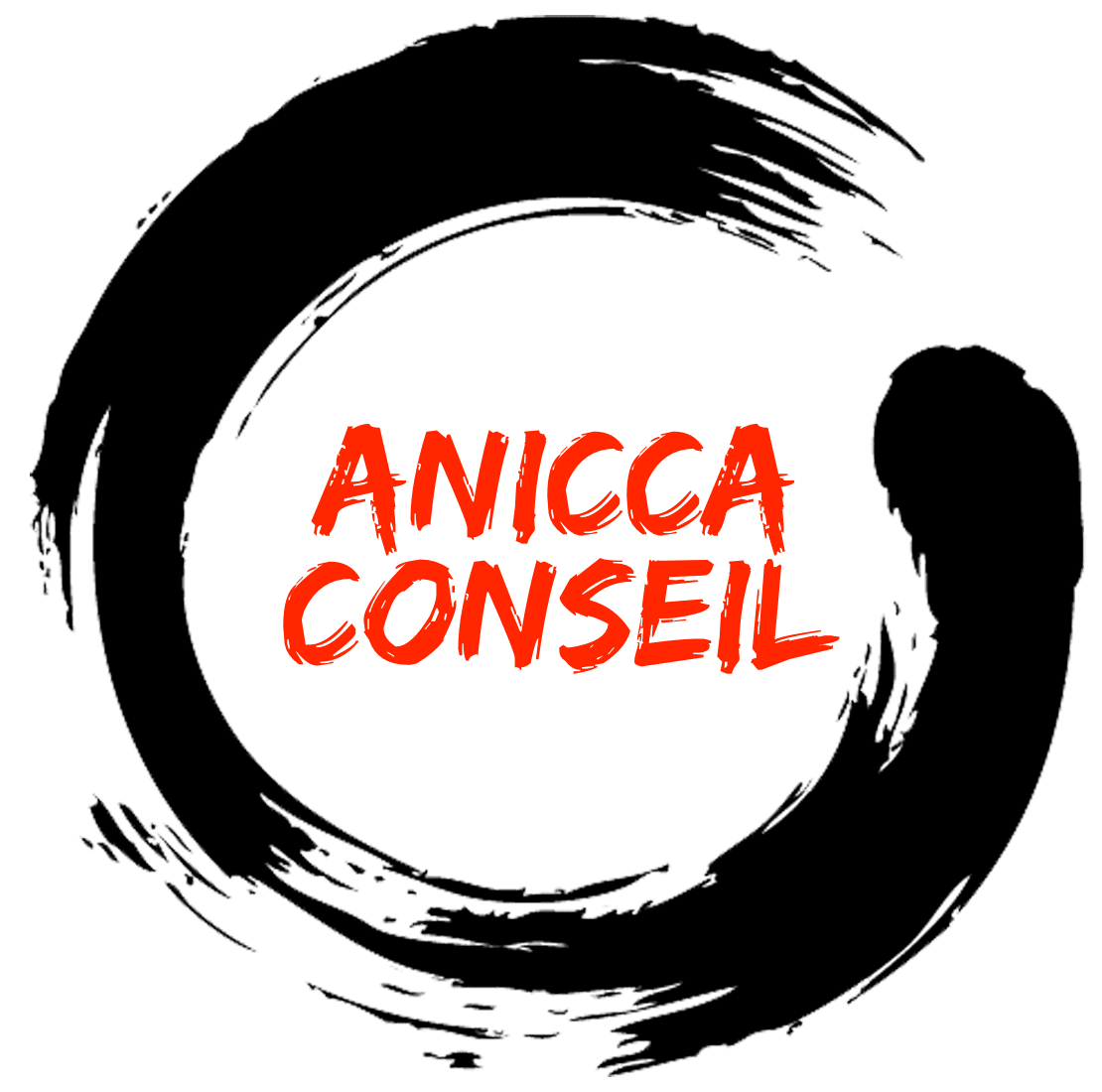Logo Anicca Conseil