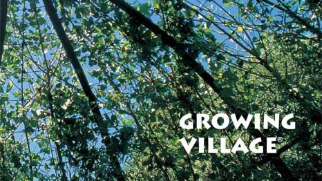 Growing Village