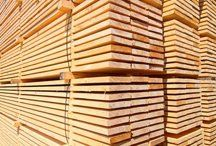 Timber in stacks