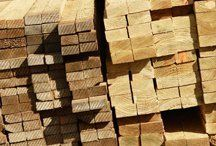 Freshly cut timber