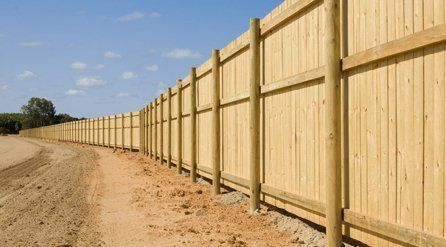 Timber fencing in blonde wood