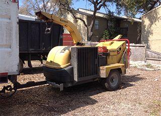 Tree Removal Austin, TX
