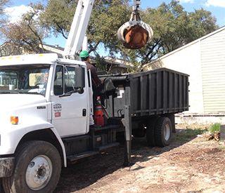 Tree Removal San Marcos, TX