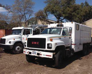 Tree Removal Austin & San Marcos, TX
