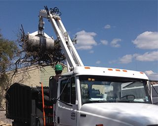 Land Clearing Austin & San Marcos, TX