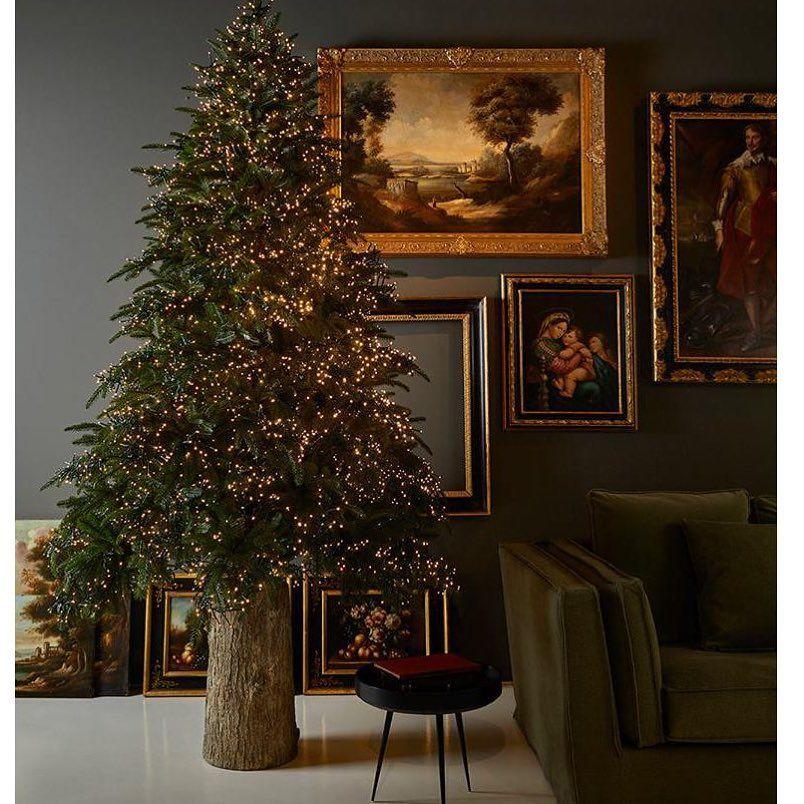 Immagini Alberi Di Natale.L Albero Di Natale