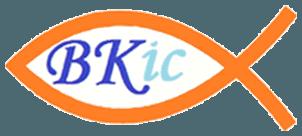 BKIC Ltd logo