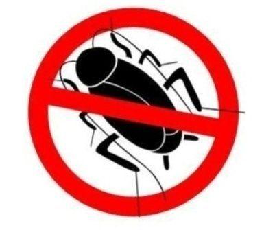Stop scarafaggi