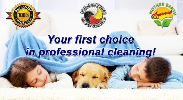 Best Carpet Cleaners In North Metro Denver Co Thornton