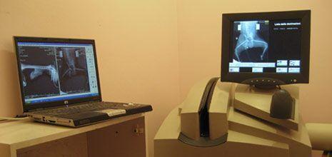 un pc portatile e un monitor