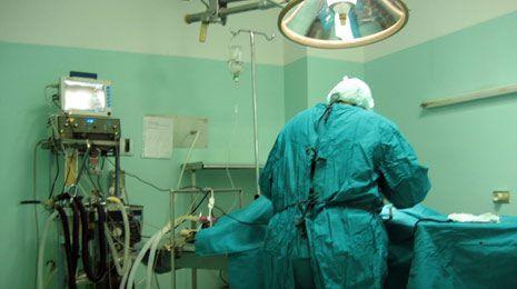 dei medici veterinari durante un'operazione