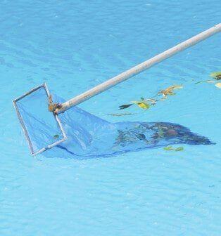 Swimming Pool Maintenance Palm Harbor Florida Blue