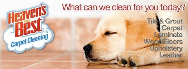 Carpet Cleaning Services Hardwood Floor Cleaning Upholstery