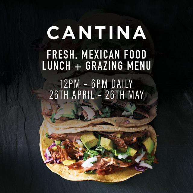 cantina mexican food