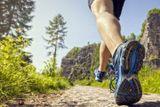 Il metabolismo e l'attività Fisica
