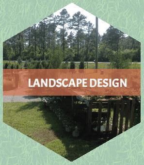 landscape design Southport, NC
