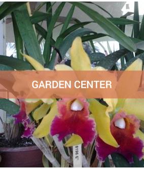 garden center Southport, NC
